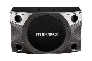 Loa karaoke Paramax P900